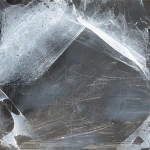 Christian Eisenberger - Spinnennetz - Malerei - 2013