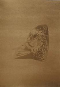 Lukas Gansterer / Clemens Wolf - Mappe: AUTODUCK - 2013 - 42 x 59,4 cm - Pigmentprint auf Hahnenmühle Photo RAG / Siebdruck / Blattgold