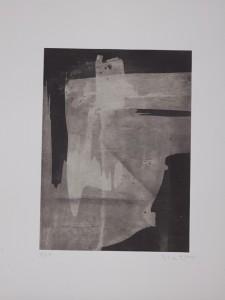 Erwin Bohatsch - o.T. - 3/21 - Druck - 2014